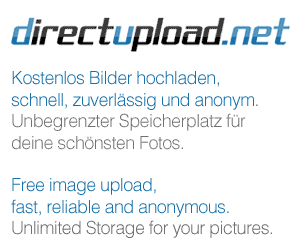 http://s11.directupload.net/images/081222/t4ms3isc.jpg